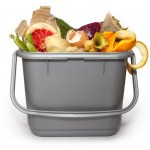 What to use for compost