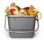 The environment & why we must reduce our food waste